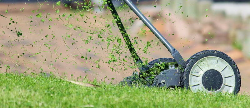 How To Keep a Pristine Lawn
